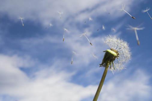 hope, hopes, uncertainty, optimism, positive attitude, midlife