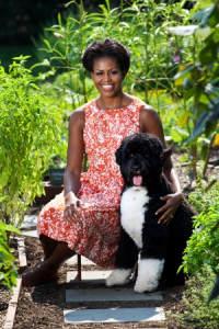 Michelle-obama-bo-dog-garden-sized