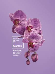 Pantone 2014 Color of the Year, fashions for boomer women, baby boomer fashions, life after 50, over 50