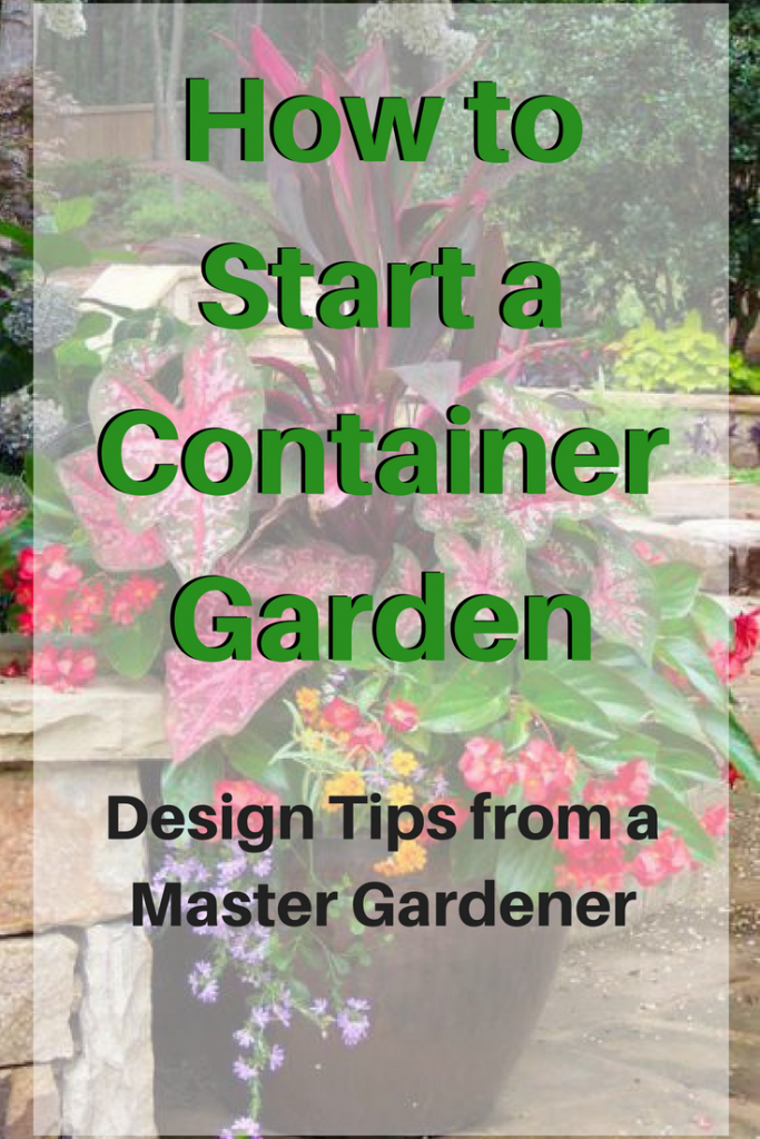 How To Start A Container Garden Midlife Boulevard