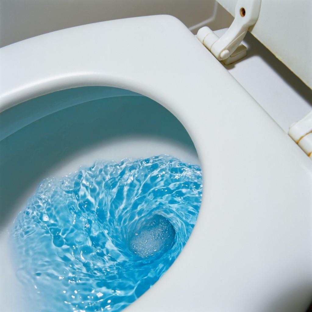 Water, Water Everywhere... Toilet Water