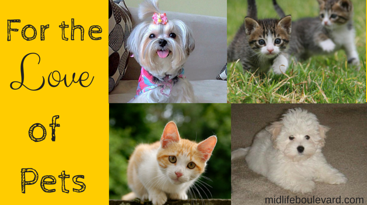 For the Love of Pets: family pets