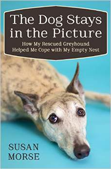 A Book Review of Susan Morse's: The Dog Stays in the Picture