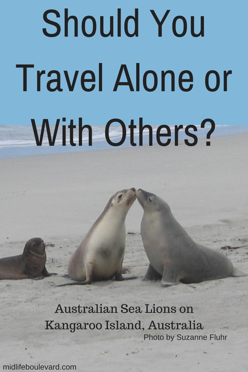 Australian Sea Lions on Kangaroo Island,