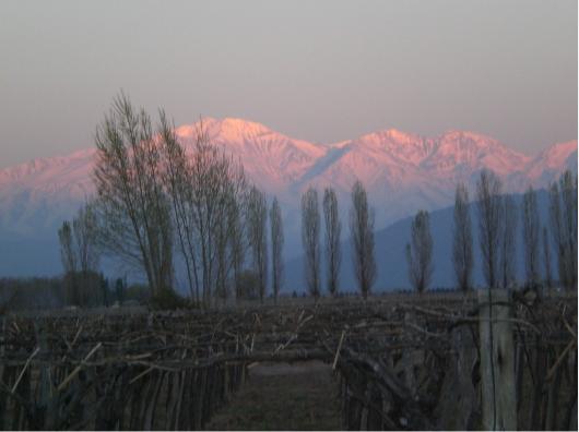 Andean Sunrise at Las Cavas Wine Lodge, Outside Mendoza, Argentina