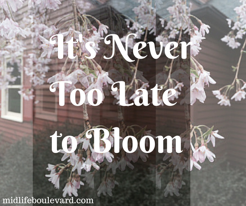 It's Never Too Late to Bloom: spring