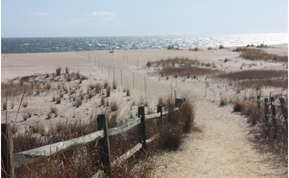 Beach Life in Cape May, New Jersey