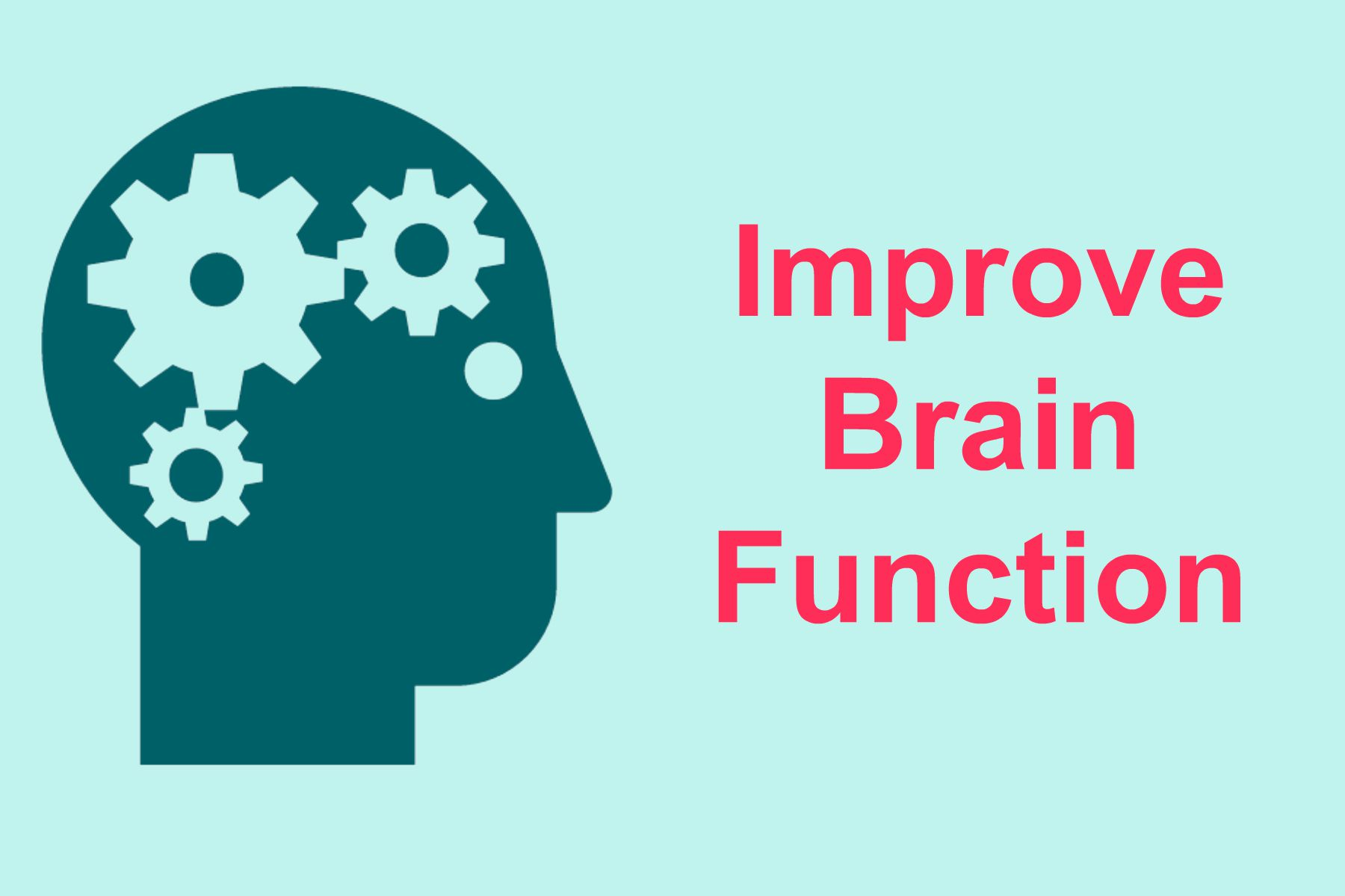 Best Ways To Improve Brain Function