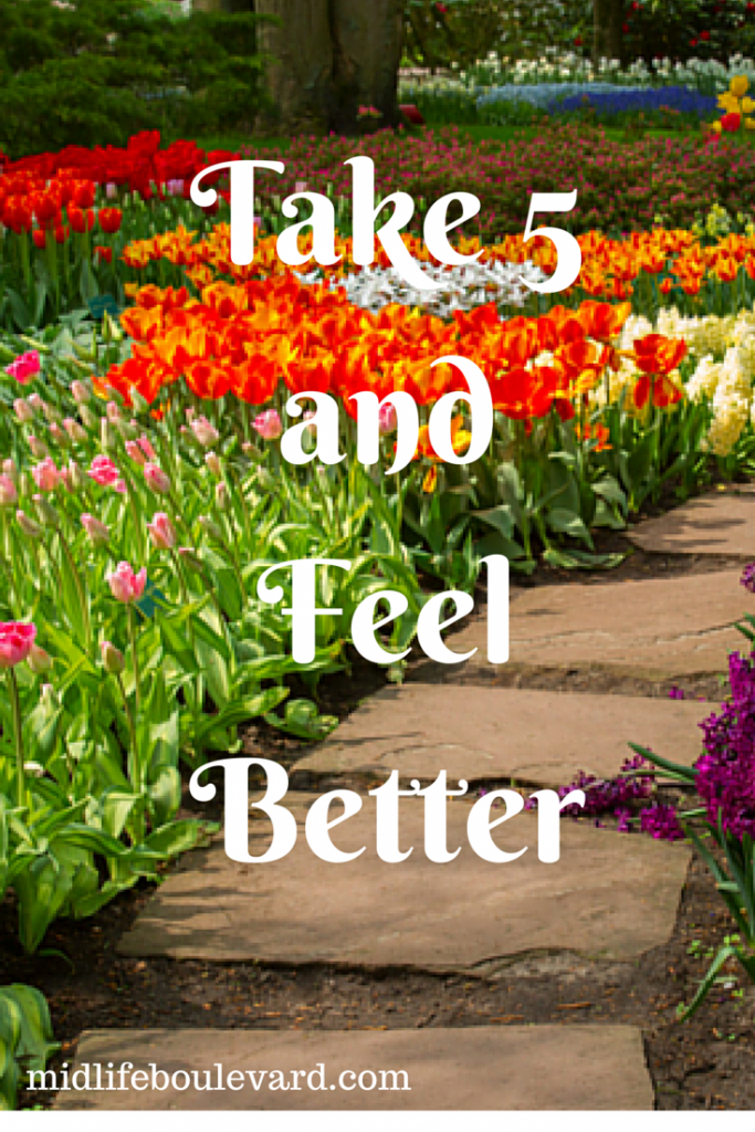 Take 5 and Feel Better: positive measures