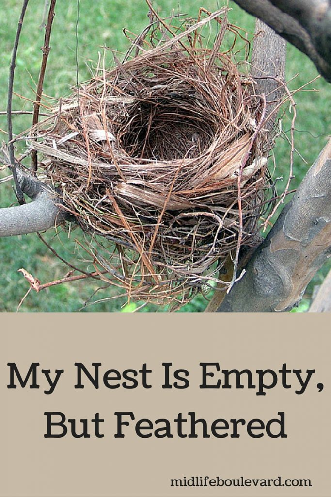 empty nest is feathered and full