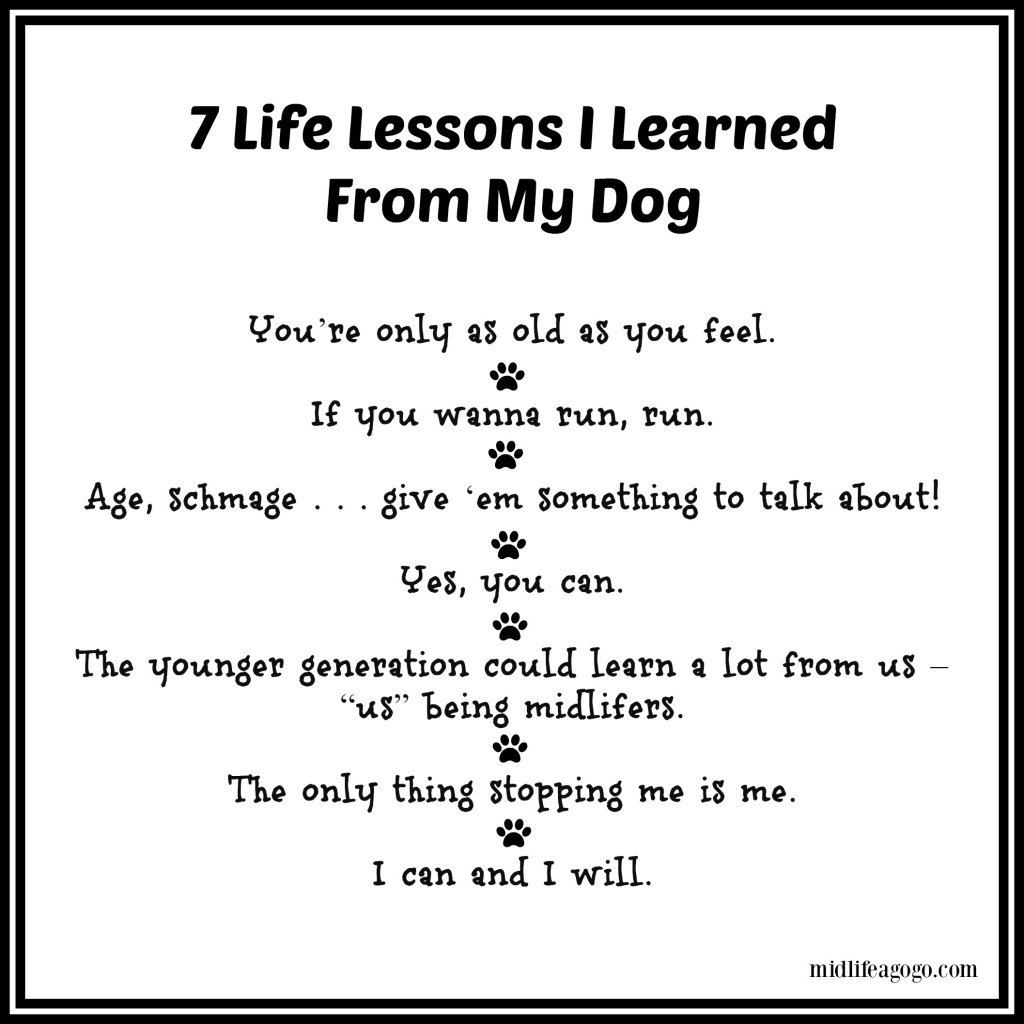 Can Dog At  Months Old Learn