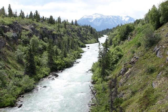 Alaskan Tour: Tutshi River