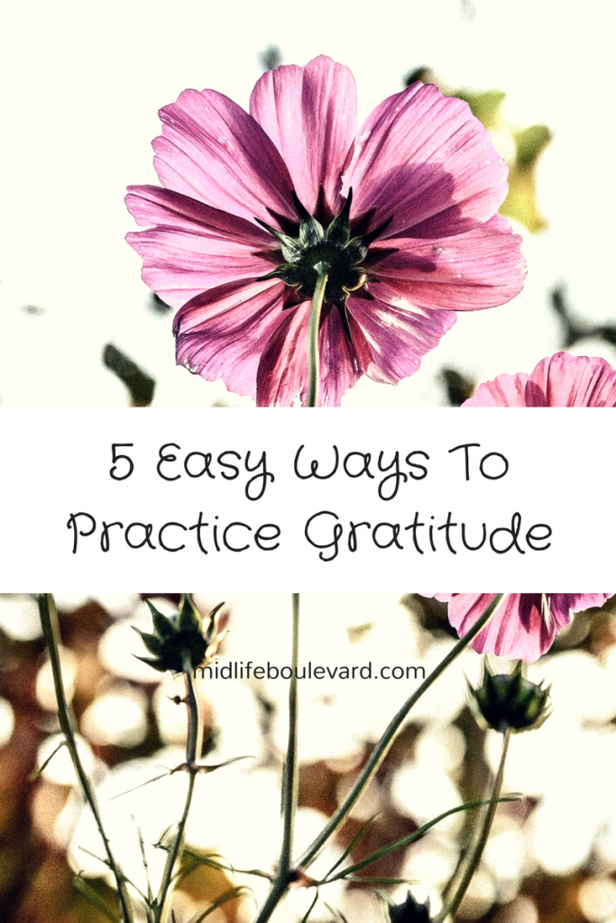 gratitude, how to feel grateful, happiness