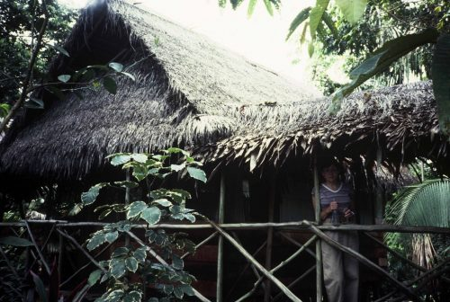 Lodge in the Peruvian Amazon