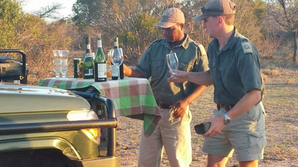 Evening wine and cheese Thornybush Game Reserve wildlife safari