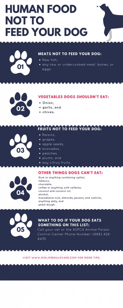 Food Not To Feed Your Dog.