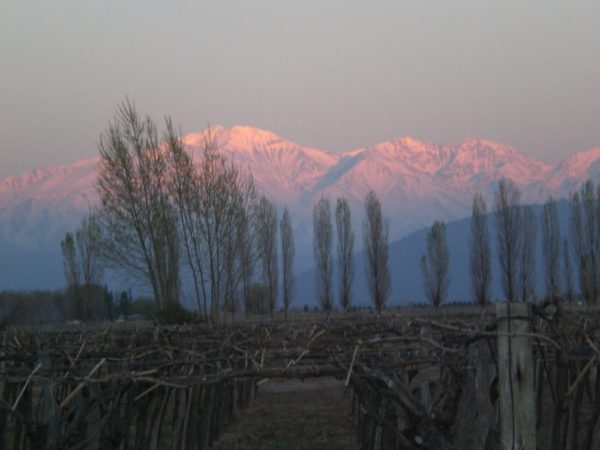 Sunrise over the Andes at Cavas Wine Lodge