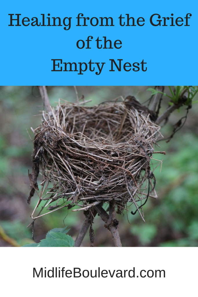 empty nest pin