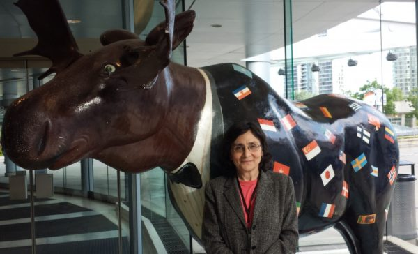 Moose at Toronto Convention Centre